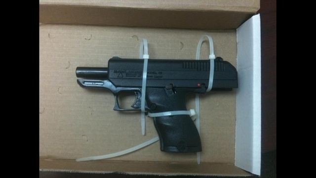 McKnight burglary gun