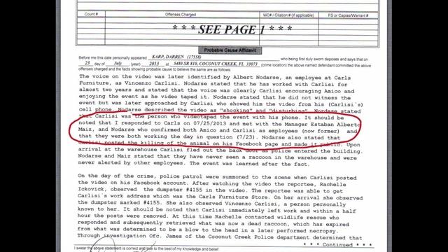 Raccoon attack police report excerpt