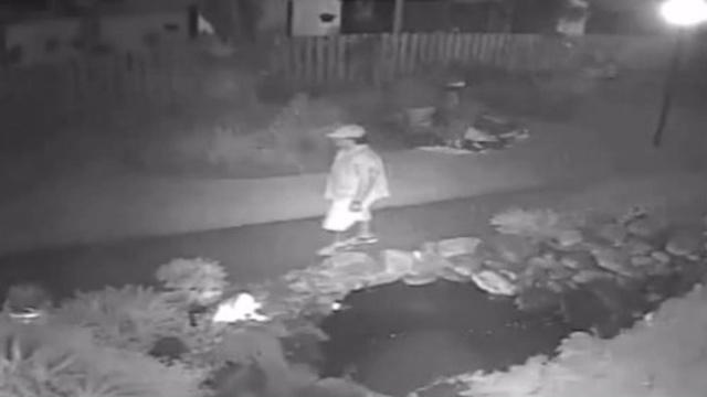 Hallandale Beach TV burglary suspect