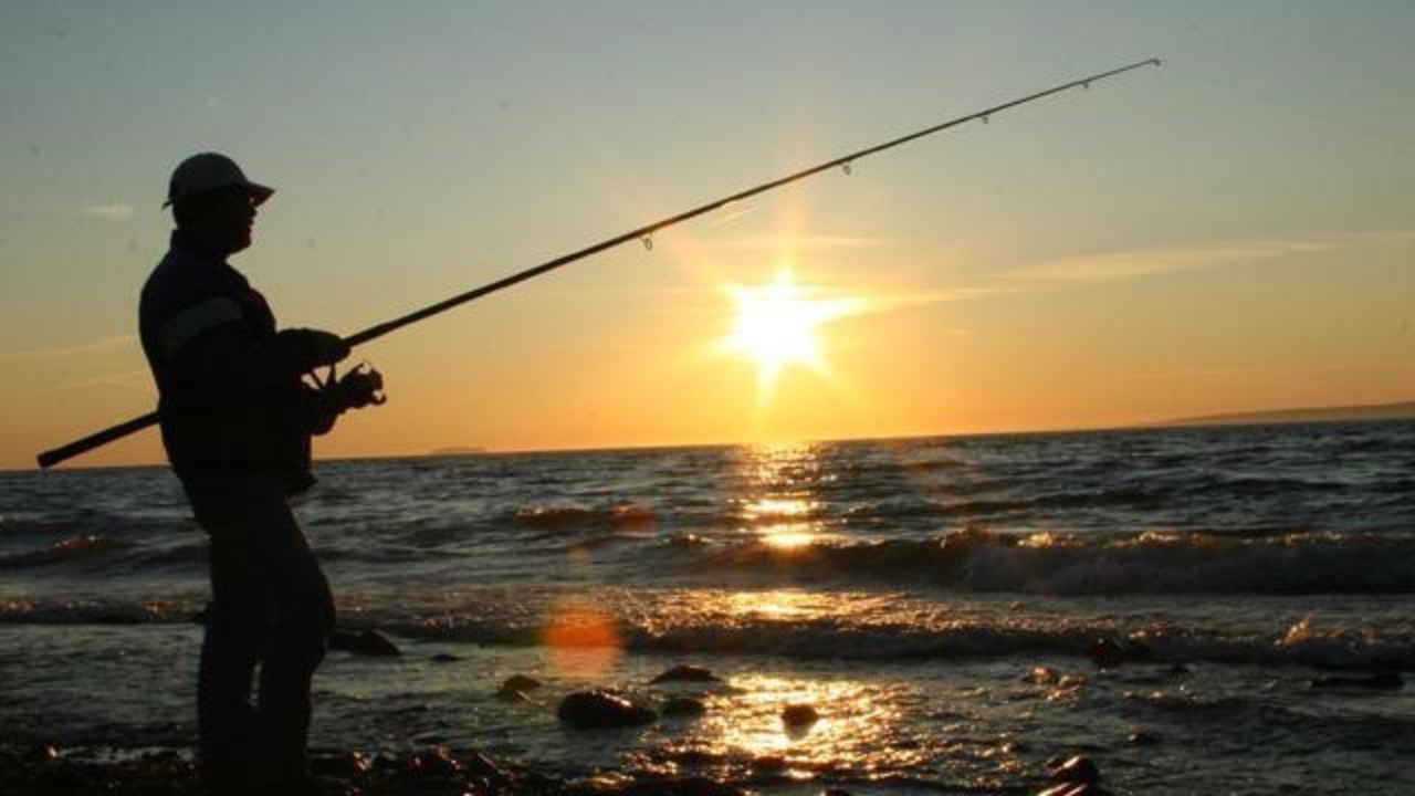 Biscayne national park may ban commercial fishing for Florida 3 day fishing license
