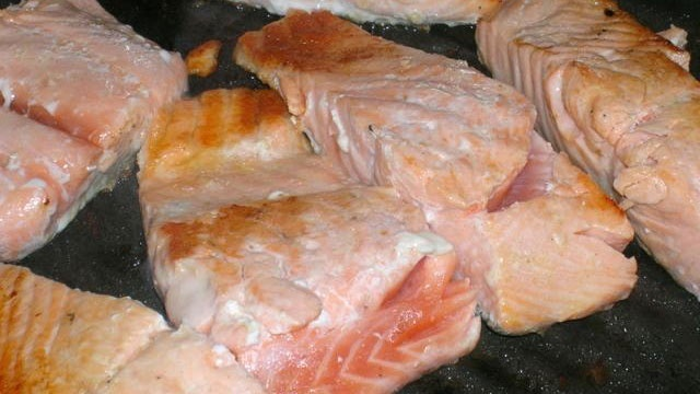 salmon fish fillets on grill