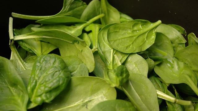 spinach vegetable leaves
