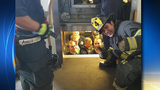 Firefighters rescue embarrassed cops stuck in elevator