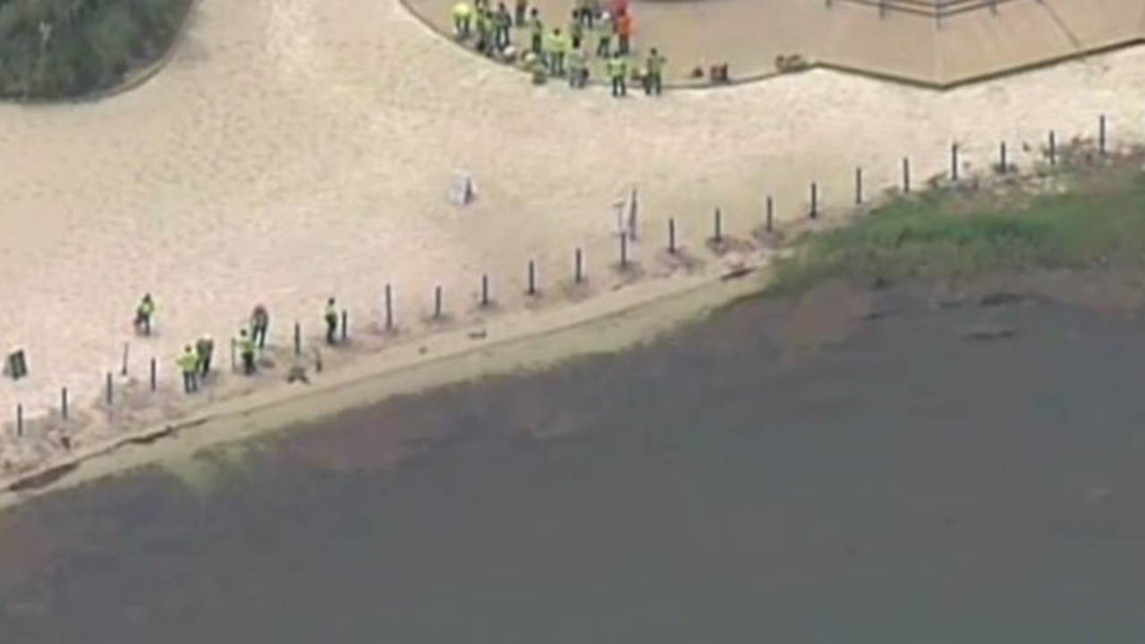 Disney Appears To Be Building Fence On Beach Of Alligator