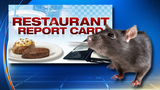 Award-winning kids' caterer ordered shut for rodents