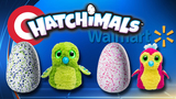 Hatchimals shipments headed to Target, Wal-Mart