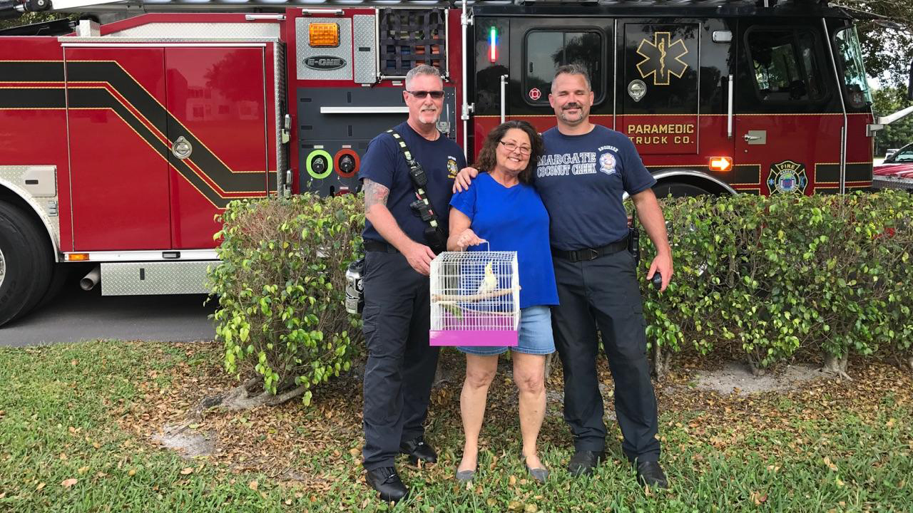 Masters of the obvious? Fire department rescues bird stuck in