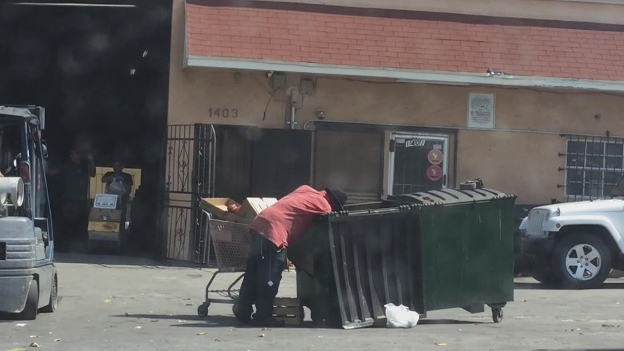 dumpster divers continue to pick resell rotting produce
