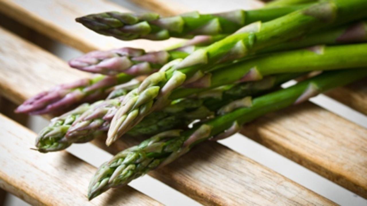 asparagus perus success story essay
