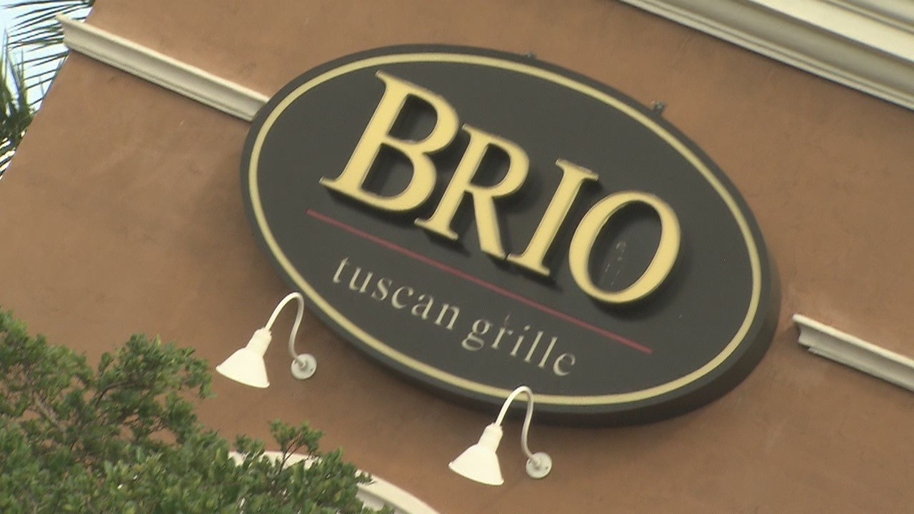 Brio, Burger King ordered shut due to roaches, rodent issues