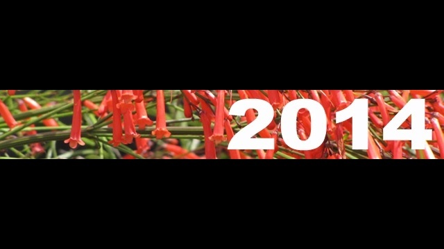 Gratigny-Plateau-Park-2014-progress-reports-button.jpg_27354316