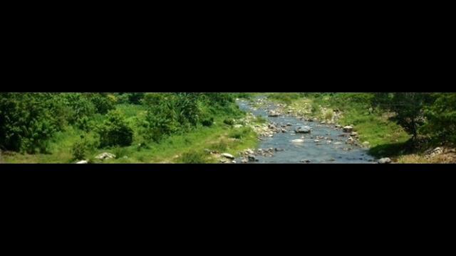 Honduran-Border-bar.jpg_27465998