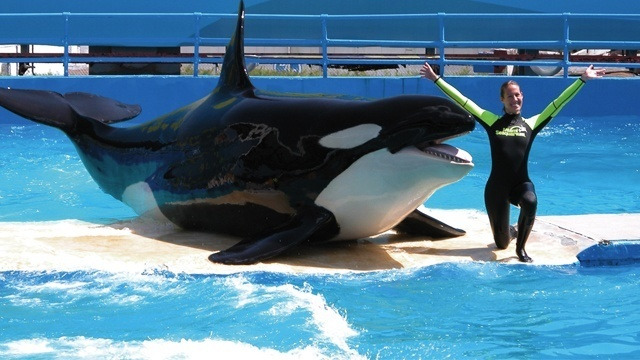 Lolita poses with trainer at Miami Seaquarium