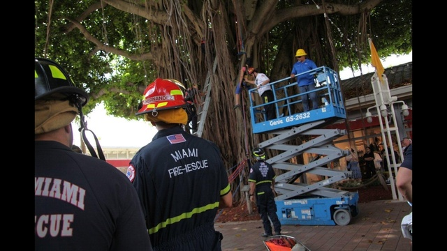 Woman-stuck-in-tree-rescued-9-jpg.jpg_26501932