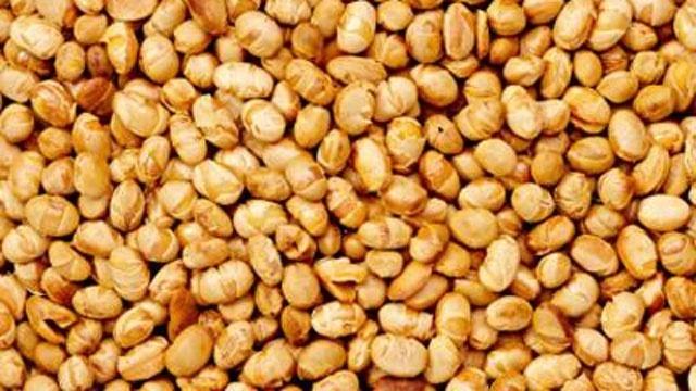 soy nuts closeup_8508494