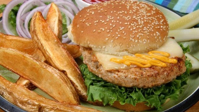 turkey burger on bun with french fries_8508512