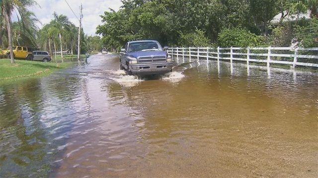 Davie flooding_16296108