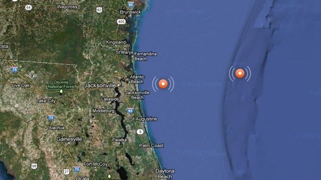 Interactive map of great white sharks near Jacksonville