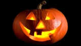 Halloween, fall events in Miami, across South Florida