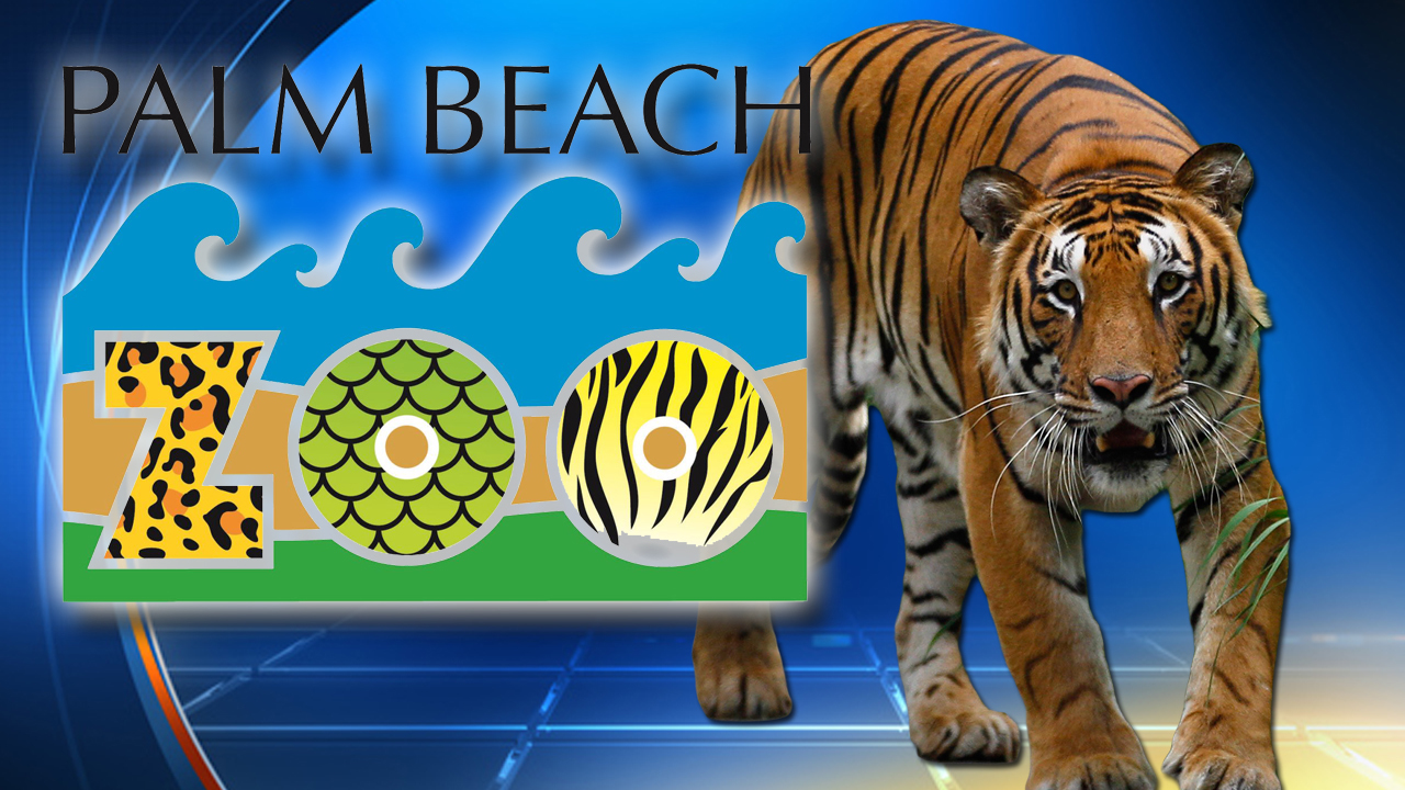 Palm Beach Zoo Tiger Attack