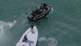Suspected Cuban migrants spotted by Coast Guard off coast of Key Biscayne