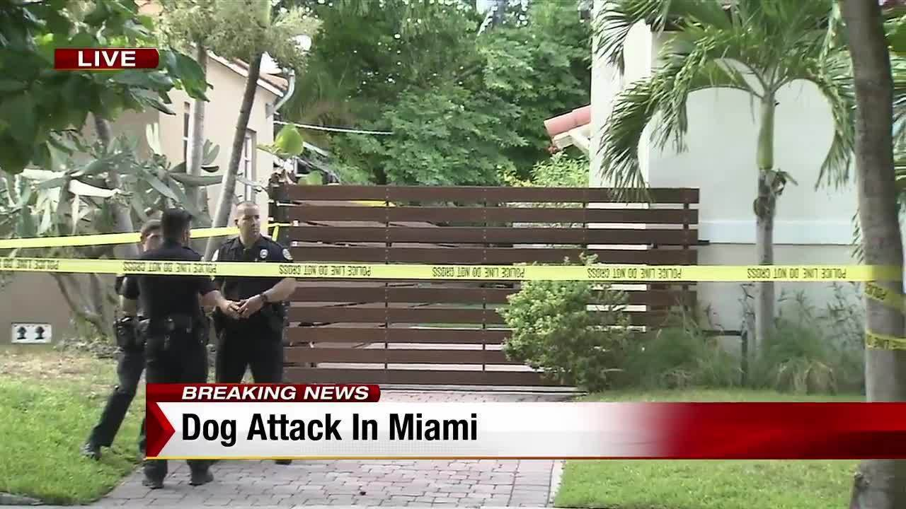 Dog attacks postal worker in Miami