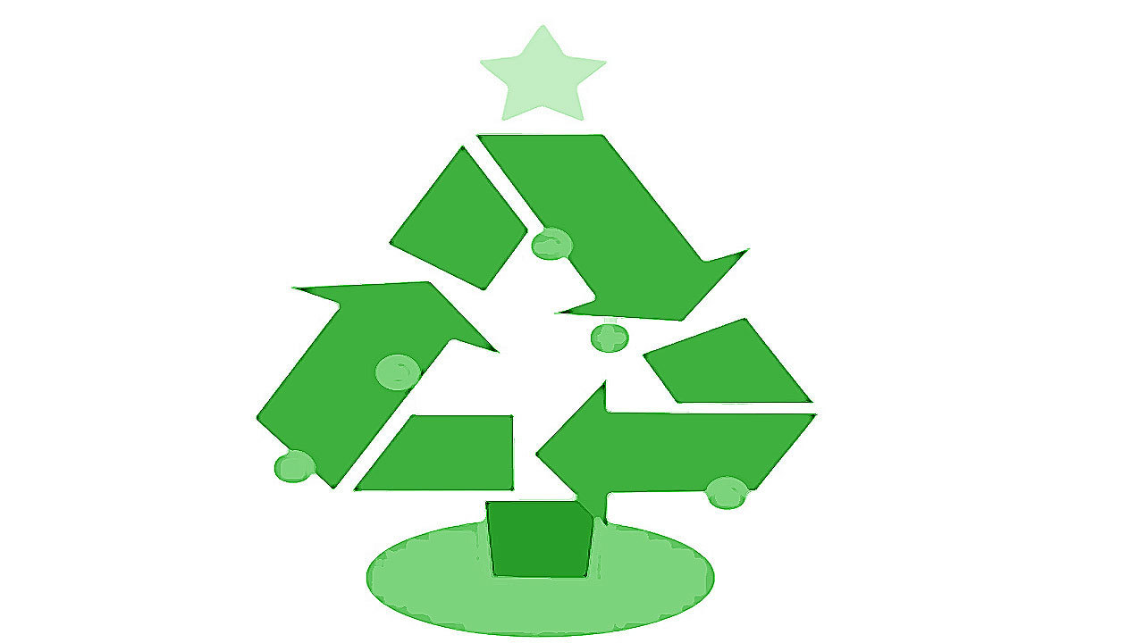 How to recycle your Christmas tree in Broward
