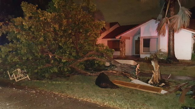 Tree down on furniture after possible tornado in Plantation