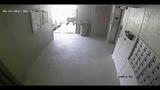 Surveillance video captures man following elderly woman into elevator