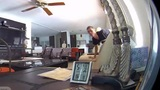 Burglar stares at surveillance camera as he slithers through window of home