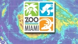 Zoo Miami to reopen Oct. 14 after Hurricane Irma
