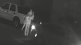 Woman's kidnapping off the street caught on camera