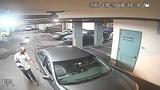 Man, woman caught on camera burglarizing car in Miami parking garage