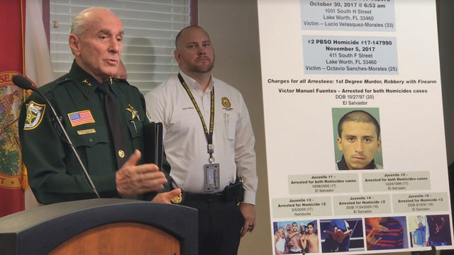 MS 13 ARRESTS IN S FLA