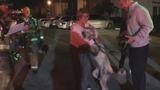 Kings Point resident reunited with dog after fire