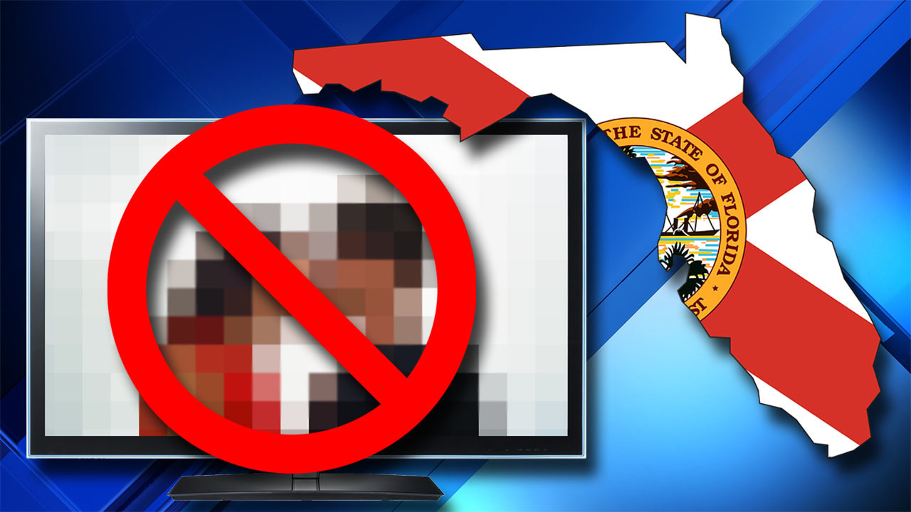 Florida Legislature could declare pornography 'a public ...