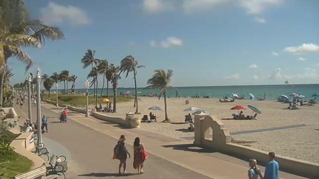 hollywood beach camera