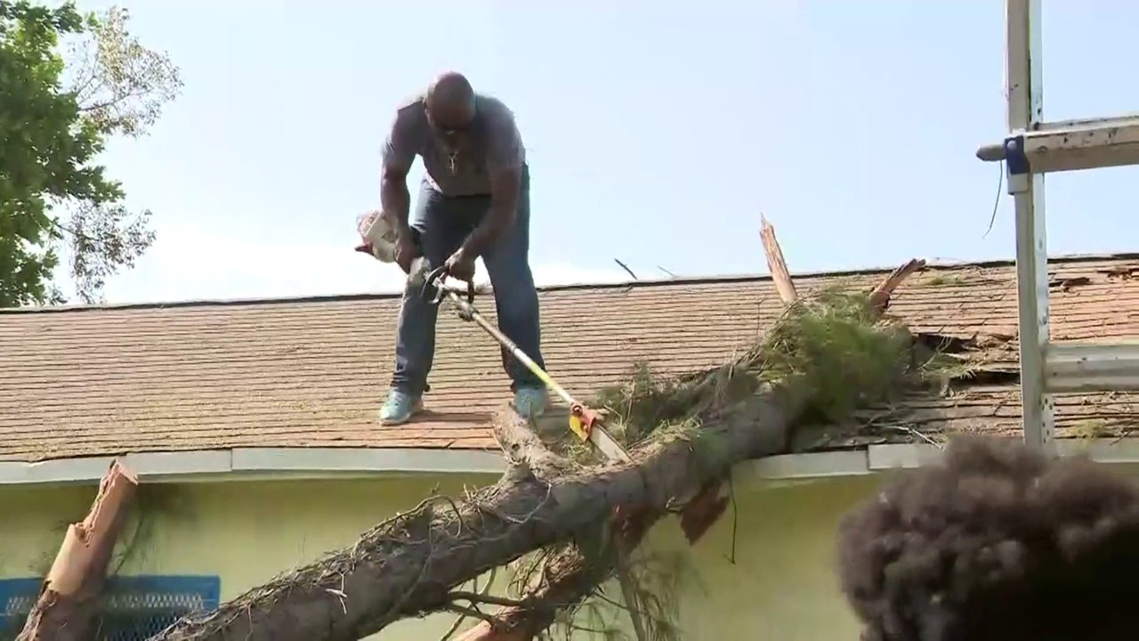Strangers Help Fort Lauderdale Woman After Tree Collapses