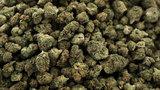 420 holiday: Americans reflect on legal marijuana