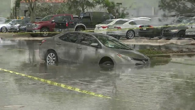 Sexual predators in palm beach county flood