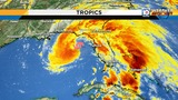 What's the difference between a tropical and a subtropical storm?