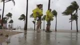 Sea portion of Miami Beach Air & Sea Show canceled amid Alberto