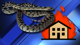 Man trying to kill snake with gasoline sets house on fire