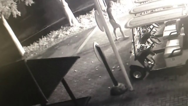 20-year-old man accused of setting golf carts on fire at... on monster cart, car cart, ups go cart,