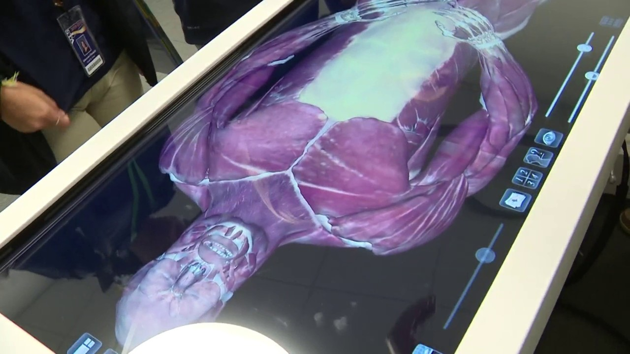 Virtual anatomy helps St  Thomas Aquinas High School students