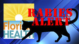 Another cat tests positive for rabies in North Miami Beach