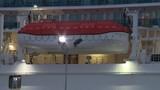 Cruise ship returns after passenger dies aboard