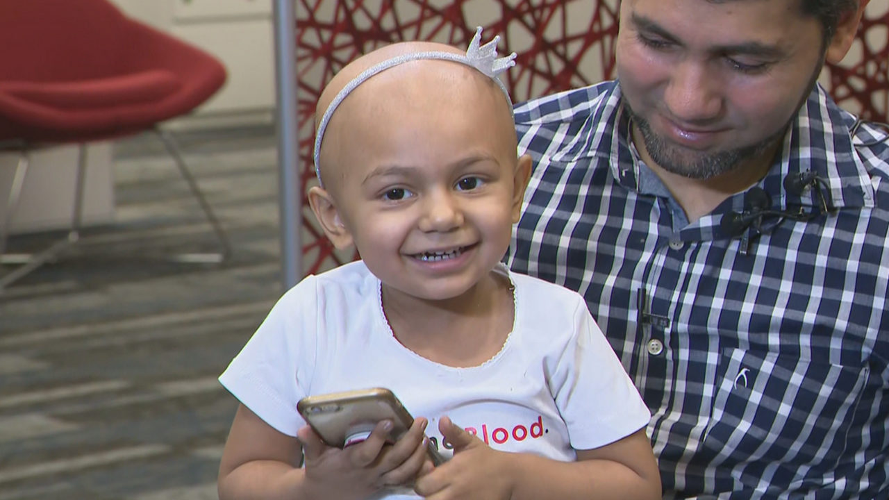 Toddler with rare blood type released from hospital after undergoing bone marrow transplant