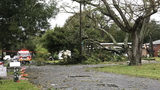 Weather service confirms tornado along Florida's Gulf Coast