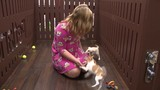 Pet store donates puppy to girl